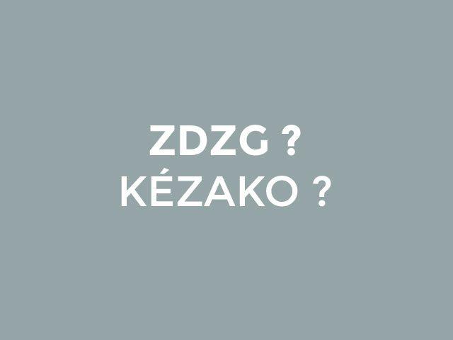 Le programme ZDZG